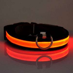 FREEBIE - LED Glow In The Dark + Flashing rechargeable Dog Safety Collar