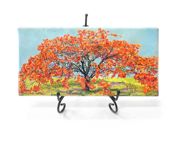 Royal Poinciana Mini Giclee
