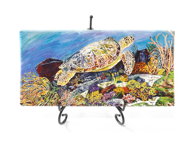 Laynes Sea Turtle Mini Giclee