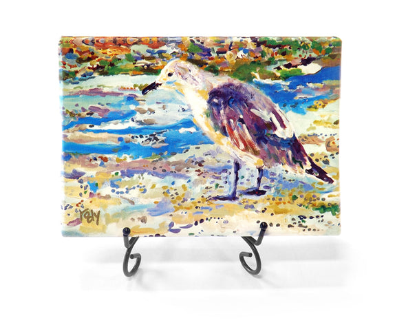 Old Bird at the Beach Mini Giclee