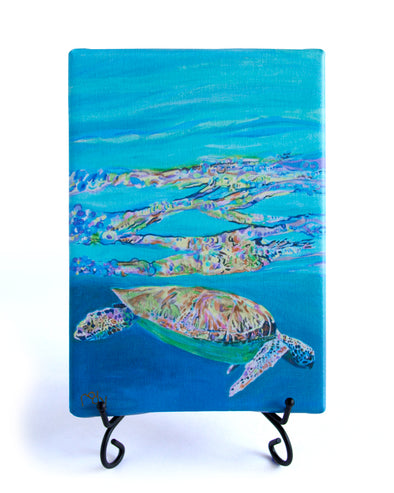 Reflections of a Sea Sea Turtle Mini Giclee