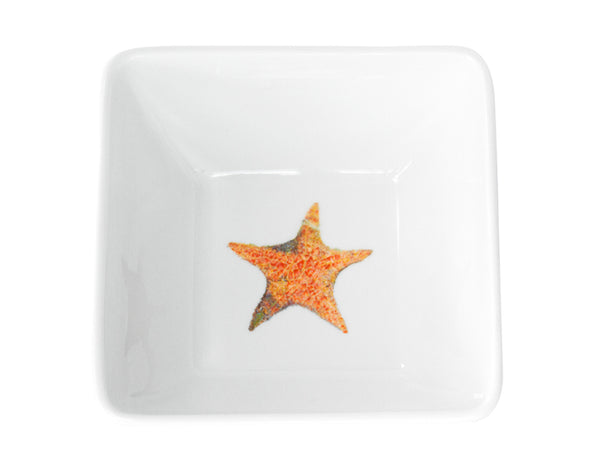 A Star is Born Medium Bowl