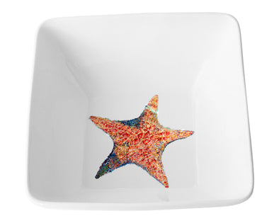 A Star is Born Extra Large Square Bowl
