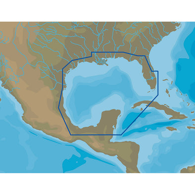 C-MAP NA-Y064 Gulf of Mexico - microSD™/SD™