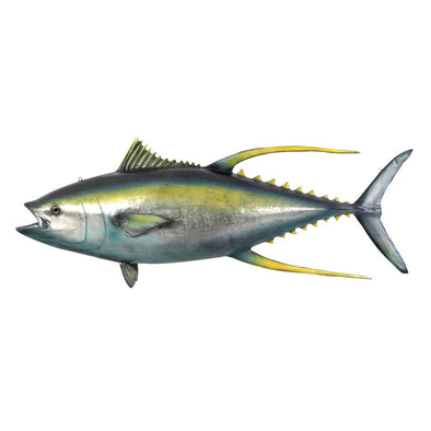 Yellow Tuna Ceiling Mount Trophy