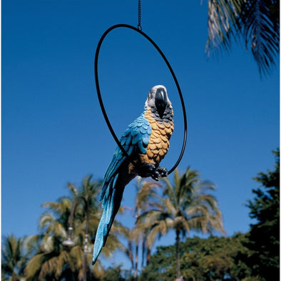 Large Polly In Paradise Parrot
