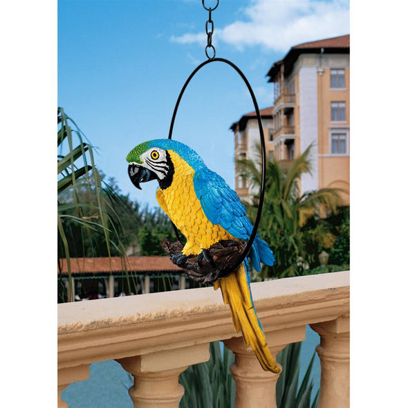 Medium Polly In Paradise Parrot