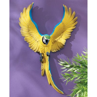 Phineas The Flapping Macaw Plaque
