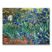 Load image into Gallery viewer, Irises hand-painted Van Gogh reproduction