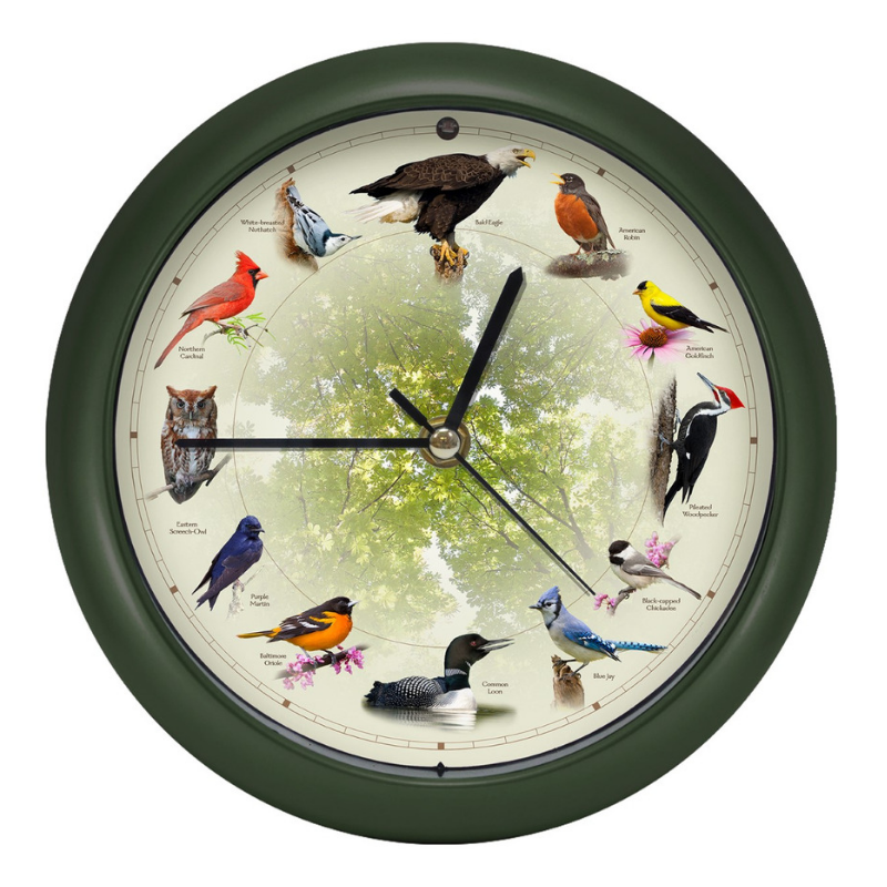"The Original Singing Bird Clock - 13"" Wall Clock"