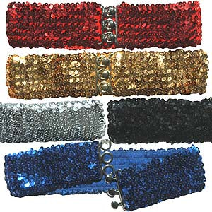 Sequin Stretch Belt