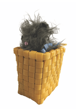 Toto in a Basket