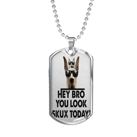 "PawsFamilyLtd - Dog Tag Pendant with Military Ball Chain with Kiwi Slang ""Hey Bro, you look Skuxx Today!"""