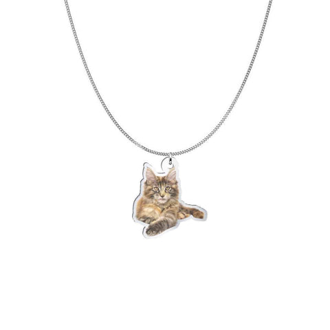Pendant and Chain with a Main Coon Cat