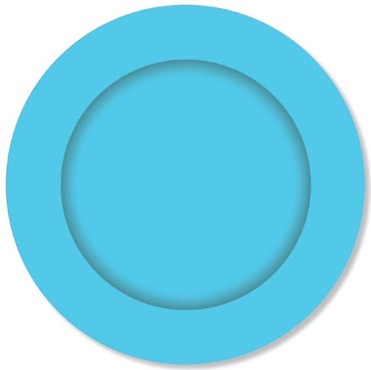 PARTY PLATES SMALL ISLAND