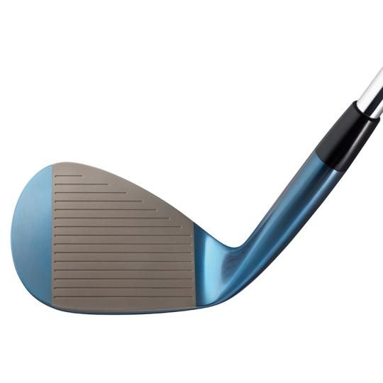 Mizuno Pro S18 Wedge ( Blue IP )