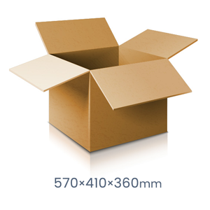 Extra Large carton - 15 Boxes