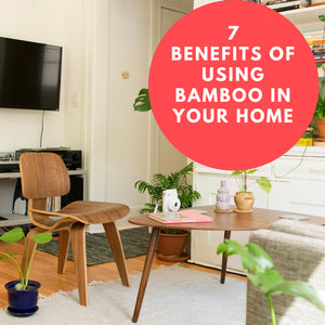 7 benefits of using bamboo in your home