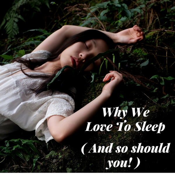 Why We Love To Sleep (And So Should You!)