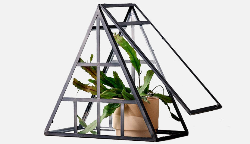 How to: Terrarium