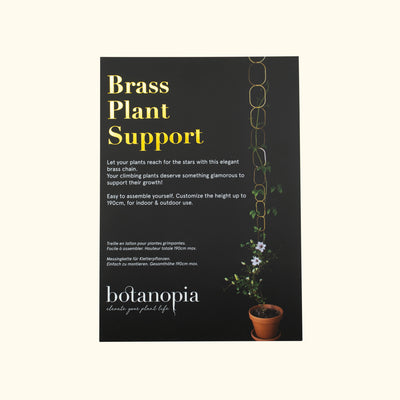 Botanopia Brass Support for Plants