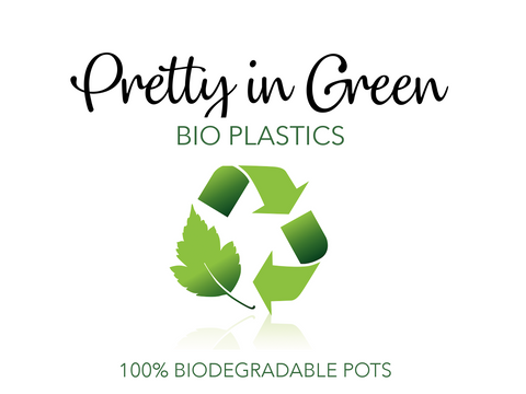 Pretty in Green Bioplastics Biodegradable Pots