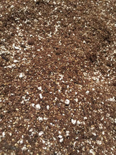 Seed Starting, Cloning, Propagation Mix! Organic Certified Ingredients