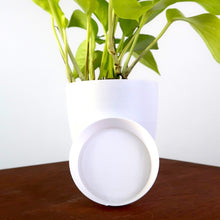 "White 4"" Signature BioPot™️ Saucers - Single"