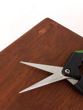 The Perfect Gardening Scissors - Gardening, Gardening Tool, Garden Supply, Pruning - Pretty in Green Plants