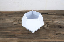 "4"" DecaPot 3D Printed BioPot with Drainage & Saucer - Succulent Plant BioPot™️ - SHIPS FREE"