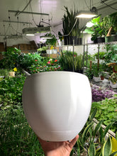 "Bella BioPot™️ 3D Printed 10""  - Extra Large White or Black Planter with Drainage & Saucer - SHIPS FREE"