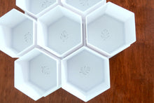 Exclusive Hexagonal Signature BioPots™️ - 7 Pot Set with Tray - Perfect for Succulents, Baby Plants