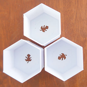 "(3"", 3"", 3"") Signature Hexagon BioPots™️ - Biodegradable Set of 3 - 3D Printed with Saucers"