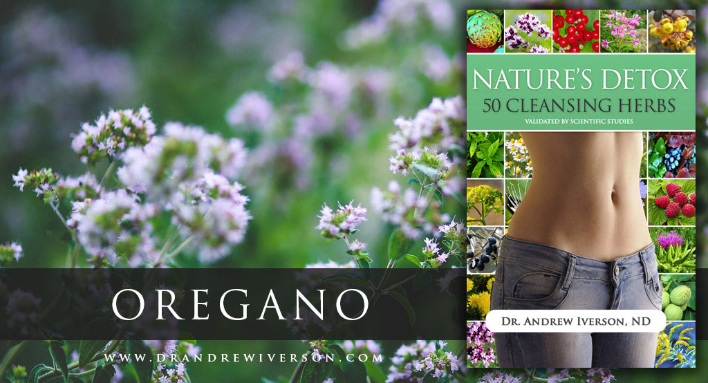 OREGANO FIGHTS INFECTIONS!
