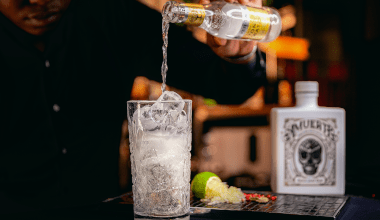 Tonic Water: how to chose the best one for your perfect Gin & Tonic?