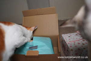 Katzenworld Review: The Innocent Cat Christmas Gift Box