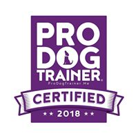 Good Dog Training School