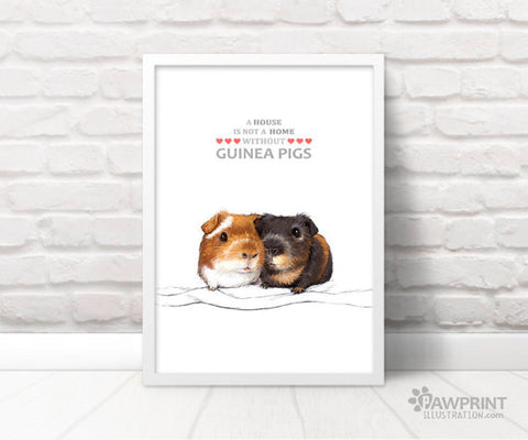 guinea pig illustration print etsy