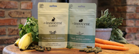 Healthy Rabbit Treats