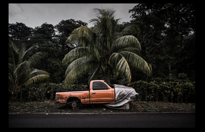 Davide Germano - The abandoned cars of Dominica (No. 14)