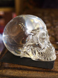 RESIN SKULL Head Figure Ornament PAGAN OCCULT Skeleton GOTHIC