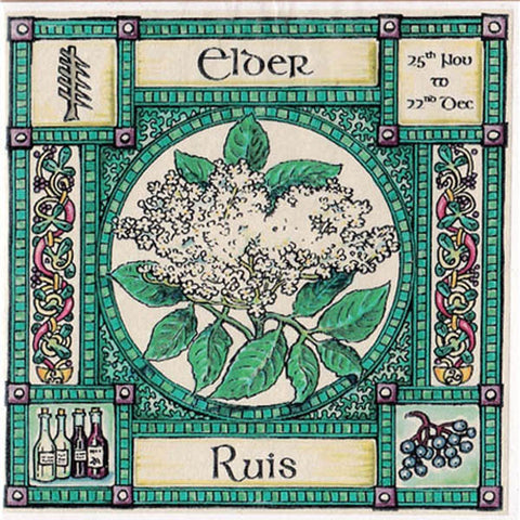 ELDER TREE GREETING CARD 25th Nov - 22nd Dec CELTIC PAGAN Ogham HEDINGHAM FAIR