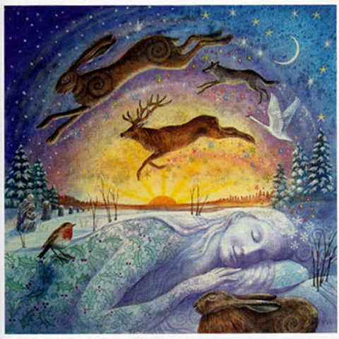 Pagan wiccan greeting cards solstice equinox birthday yule xmas we yule xmas greeting card gaias winter rest pagan solstice wendy andrew m4hsunfo
