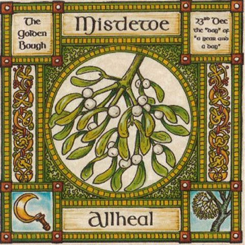 MISTLETOE TREE GREETING CARD 23rd Dec CELTIC PAGAN Ogham HEDINGHAM FAIR