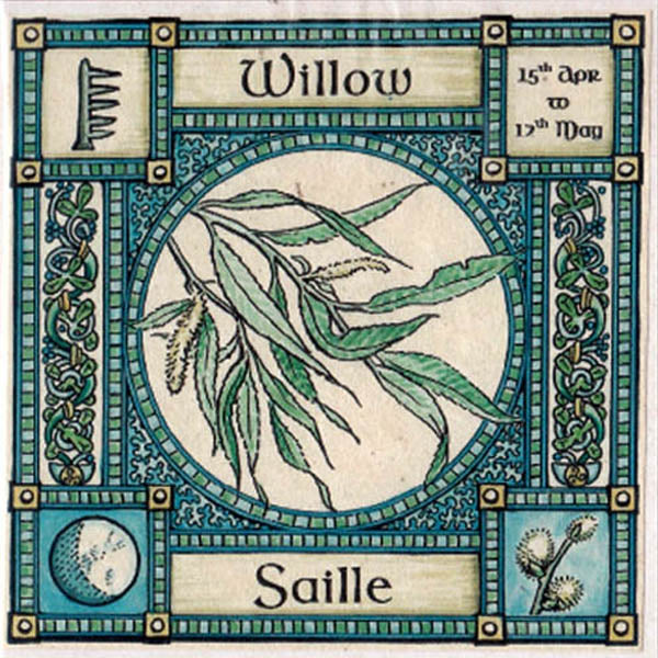 Willow tree greeting card 15th apr 17th may celtic ogham hedingham willow tree greeting card 15th apr 17th may celtic pagan ogham hedingham fair m4hsunfo