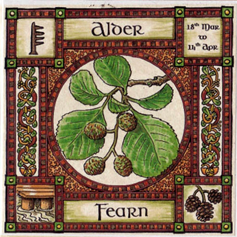 ALDER TREE GREETING CARD 18th Mar - 14th Apr CELTIC PAGAN Ogham HEDINGHAM FAIR