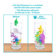 Water Growing Dinosaurs - 32 Pack - Funky Toys