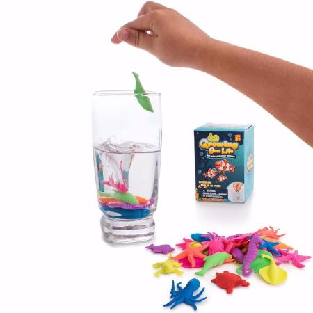 Water Growing Sea Creatures Animals - 32 Pack - Funky Toys