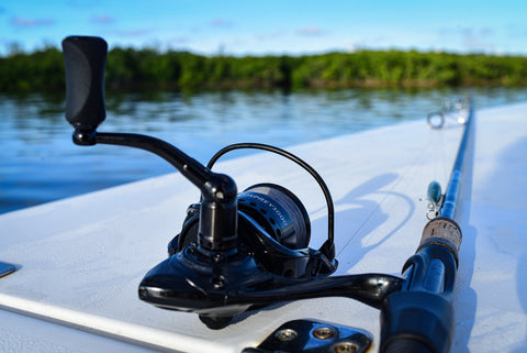 best reel for catching redfish (red drum)