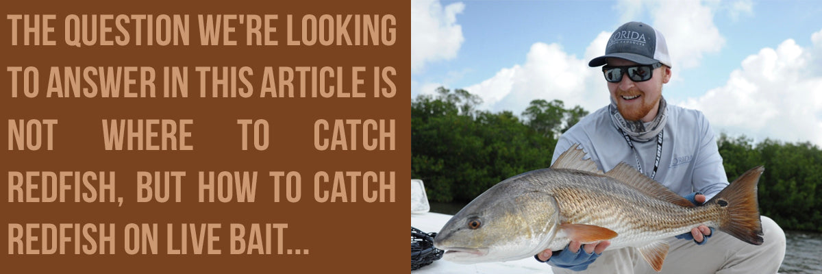 How To Catch Redfish (Red Drum) - A Man Holding A Redfish